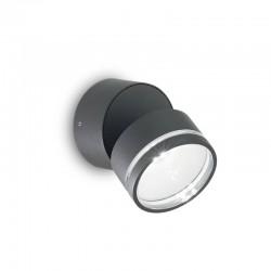 Накладной светильник Ideal Lux 247076 Omega AP Round Antracite 3000K